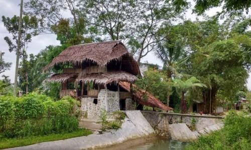 INDONEZJA / Sumatra / Bukit lawang / biała bez mleka