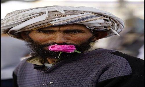 AFGANISTAN / Herat Province / Herat / Na ulicy 10