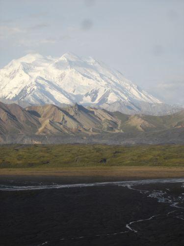 Zdjęcia: Denali Nat'l Park & Pres., Mt. McKinley, ALASKA
