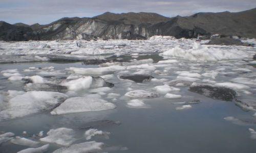 Zdjecie ALASKA / brak / Denali Nat'l Park & Pres. / Muldrow Glacier