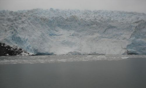 Zdjecie ALASKA / brak / Kenai Fjords Nat'l. Park / Glacier