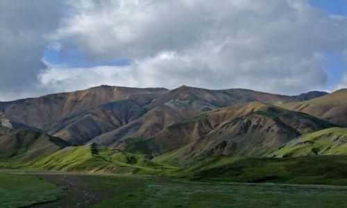 Zdjecie ALASKA / - / Alaska Range / Park Narodowy Denali / Alaska Range 2