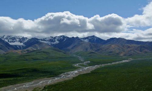 Zdjęcie ALASKA / - / Alaska Range / Park Narodowy Denali / Alaska Range 3