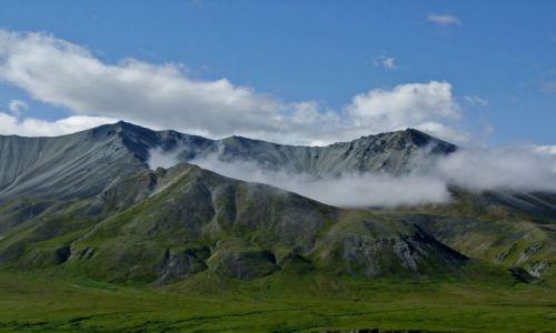 Zdjecie ALASKA / - / Alaska Range / Park Narodowy Denali / Alaska Range 4