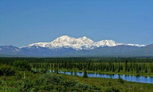 Zdjęcie ALASKA / - / Alaska Range / Park Narodowy Denali / McKinley