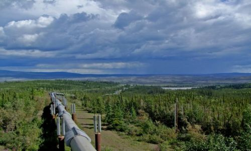 ALASKA / - / Alaska / Dalton Highway / Alaska Pipe Line