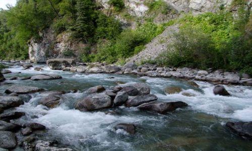 Zdjęcie ALASKA / - / Alaska / Talkeetna Mountain / gorski potok