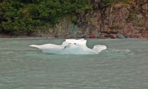 Zdjęcie ALASKA / - / Polwysep Kenai / statek