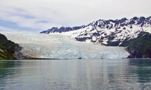 Zdjęcie ALASKA / - / Gulf of Alaska / Aialik Bay / lodowiec Aialik