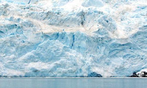 Zdjecie ALASKA / - / Gulf of Alaska / Aialik Bay / lodowiec Aialik 2