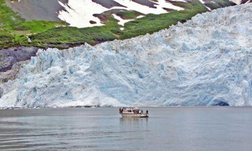Zdjęcie ALASKA / - / Gulf of Alaska / Aialik Bay / lodowiec Aialik 4