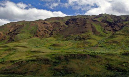 Zdjęcie ALASKA / - / Alaska Range / Gory Alaska 3