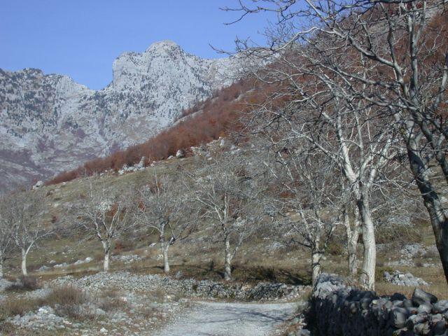 Zdjęcia: okolice Koplika, Jesień w górach, ALBANIA