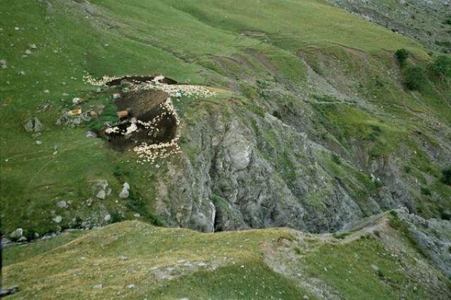 Zdjęcia: Góry Korab, Owce, ALBANIA