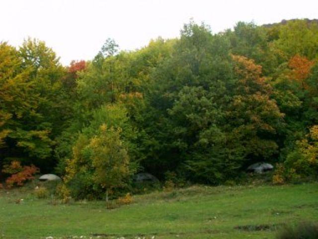 Zdjęcia: Dajti, okolice Tirany, Jesienne widoki, ALBANIA