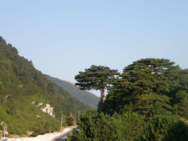 Zdjęcia: riwiera albańska, Bałkany, widoczek , ALBANIA