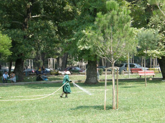 Zdjęcia: riwiera albańska, Bałkany, zraszaczka trawników - Tirana, ALBANIA