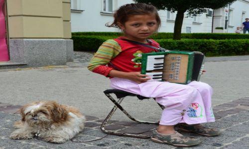 Zdjecie ALBANIA / - / Elbasan / Mała akordeonistka