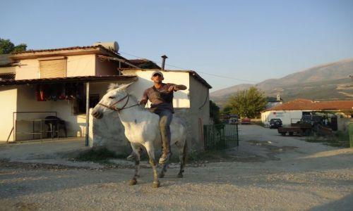 Zdjęcie ALBANIA / Gjirokaster / droga Vier-Gjirokaster / Transport osobisty