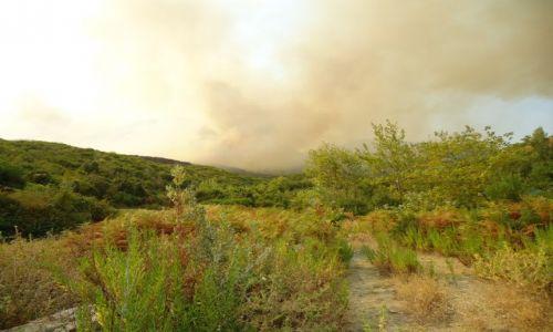 Zdjecie ALBANIA / Gjirokaster / droga Gjirokaster - Saranda / Pożar lasu