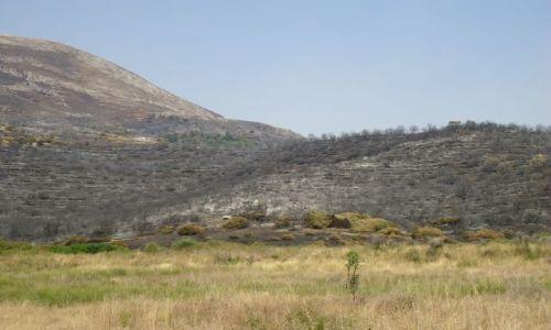Zdjecie ALBANIA / Gjirokaster / droga Gjirokaster - Saranda / Po pożarze