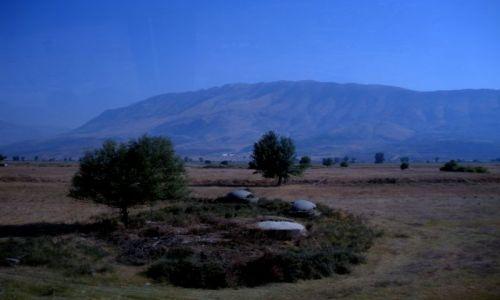 ALBANIA / gdzieś w Albanii / gdzieś w Albanii / Bunkry - pieczarki