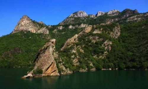 Zdjęcie ALBANIA / Szkodra / Jezioro Koman  / Nad brzegiem