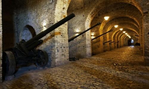 Zdjęcie ALBANIA / Gjirokastra / Twierdza Kalaja / Muzeum militariów z  II wojny światowej