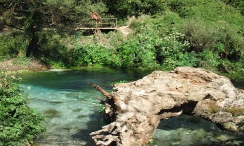 Zdjecie ALBANIA / - / Blue eye / Syri i Kalter