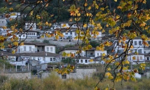 Zdjecie ALBANIA / Berat / Berat-Gorica / Miasto i liście