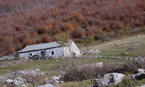 Zdjecie ALBANIA / brak / okolice Koplika / Chatka