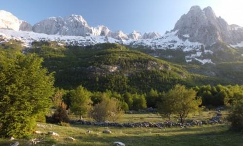 Zdjecie ALBANIA / Północna Albania / Theth / Park Narodowy Thethit