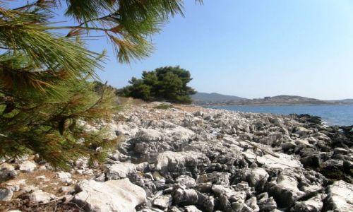 Zdjęcie ALBANIA / Bałkany / Ksamil / zatoczka