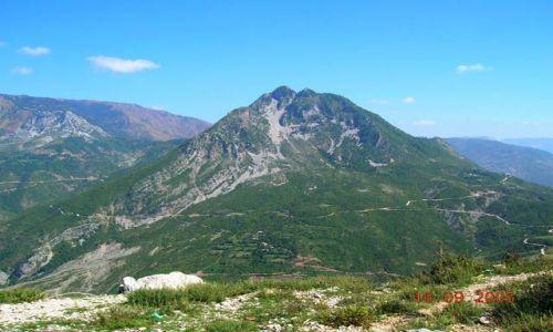 Zdjęcie ALBANIA / Albania / Kruja / okolice Kruji