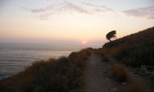 Zdjecie ALBANIA / poludnie / okolice zat porto palermo / droga do...