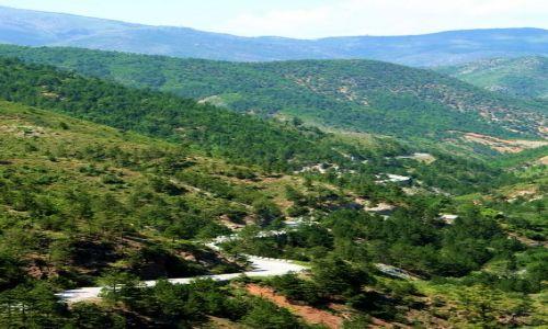 ALBANIA / - / Góry Albanii / Serpentyny