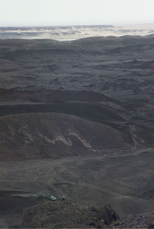 Zdjęcia: Brezina, oaza na przedmiesciu pustyni, Brezina z góry, ALGIERIA
