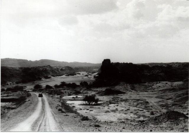 Zdjęcia: miedzy el Beyadh a Breziną, oaza na przedmiesciu pustyni, droga do Breziny, ALGIERIA