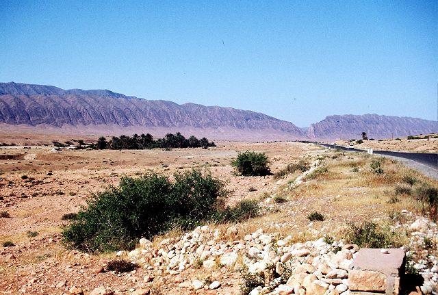 Zdj�cia: po�udnie, wrota pustyni, El Kantara, ALGIERIA