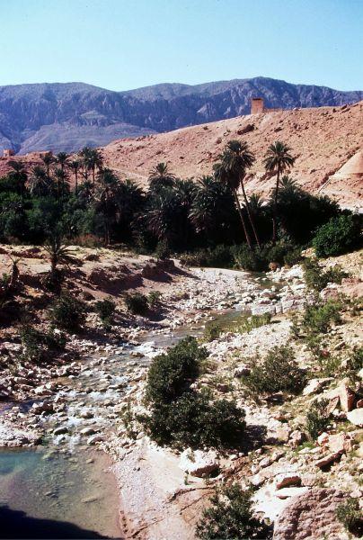 Zdjęcia: południe, wrota pustyni, El Kantara, ALGIERIA
