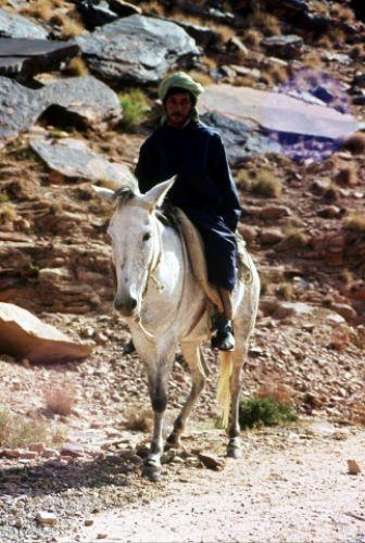 Zdjęcia: el Ateuf, MZab, pasterz, ALGIERIA