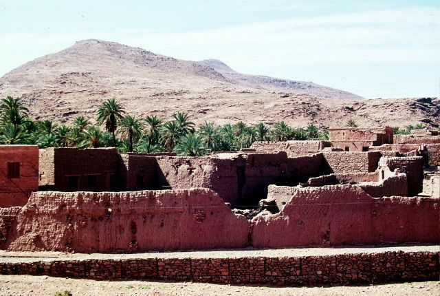 Zdj�cia: okolice Ouargli, po�udnie, ksar, ALGIERIA