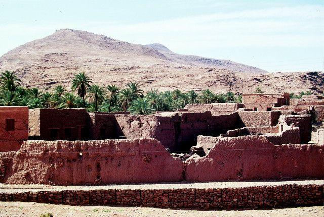 Zdjęcia: okolice Ouargli, południe, ksar, ALGIERIA