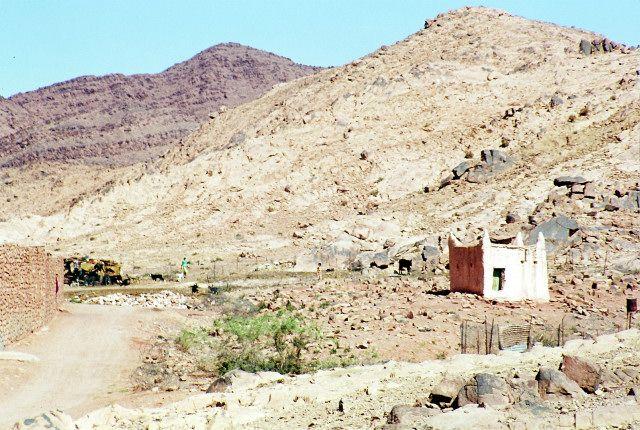Zdj�cia: pod Touggurtem, po�udnie, osada z marabutem, ALGIERIA