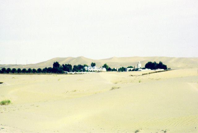 Zdjęcia: el Oued, południe, el Oued, ALGIERIA
