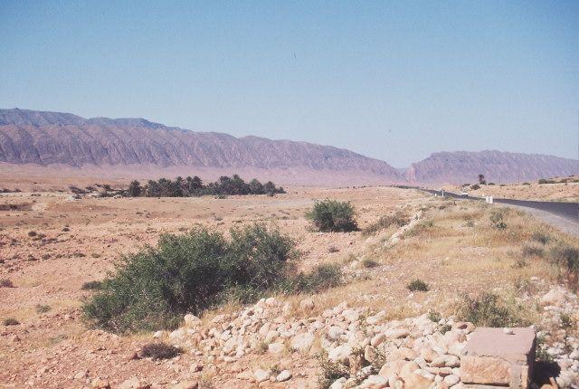 Zdj�cia: el Kantara, po�udnie, el Kantara od po�udnia, ALGIERIA