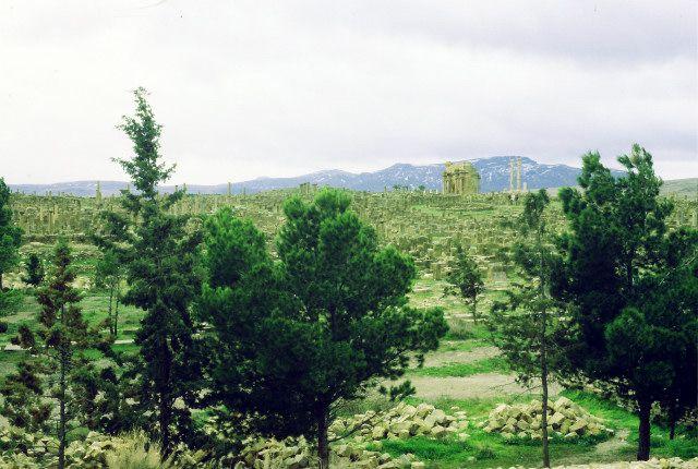Zdjęcia: timgad, wschód, timgad- widok, ALGIERIA