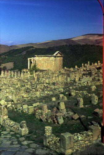 Zdjęcia: Djamila, wschód, Djamila, ALGIERIA
