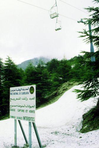 Zdjęcia: Tikjda, wschód,, w górach djordjoura, ALGIERIA