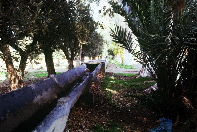Zdjęcia: okolice Annaby, wschód, akwedukt, ALGIERIA